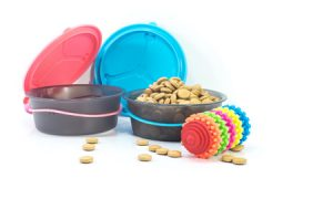 Cat Bowls and Toy