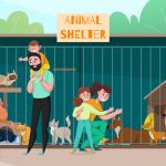 Commercial Cat Enclosures for Animal Shelters